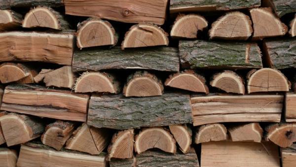 Арестуваха  камион с крадена дървесина  във фабрика за пелети