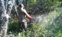 Ще наказват горски заради незаконни пътища над Кресна и Симитли