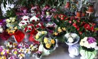 Търговските вериги удариха бизнеса с цветя на дребните за 8-ми март