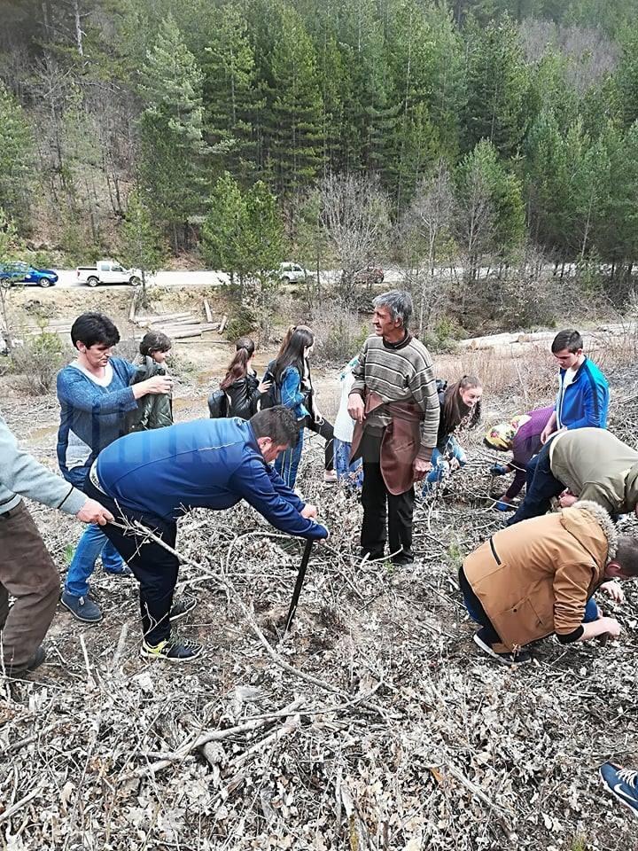 В Белица засадиха ученическа гора в м.Трестеник