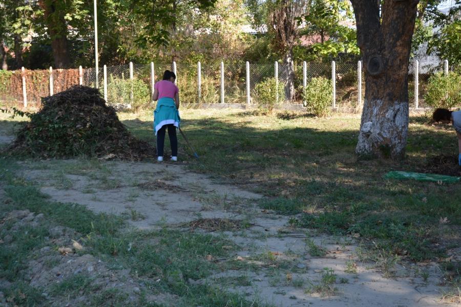 Добрият пример! Млади хора от Брежани грабнаха метлите,чистят си селото