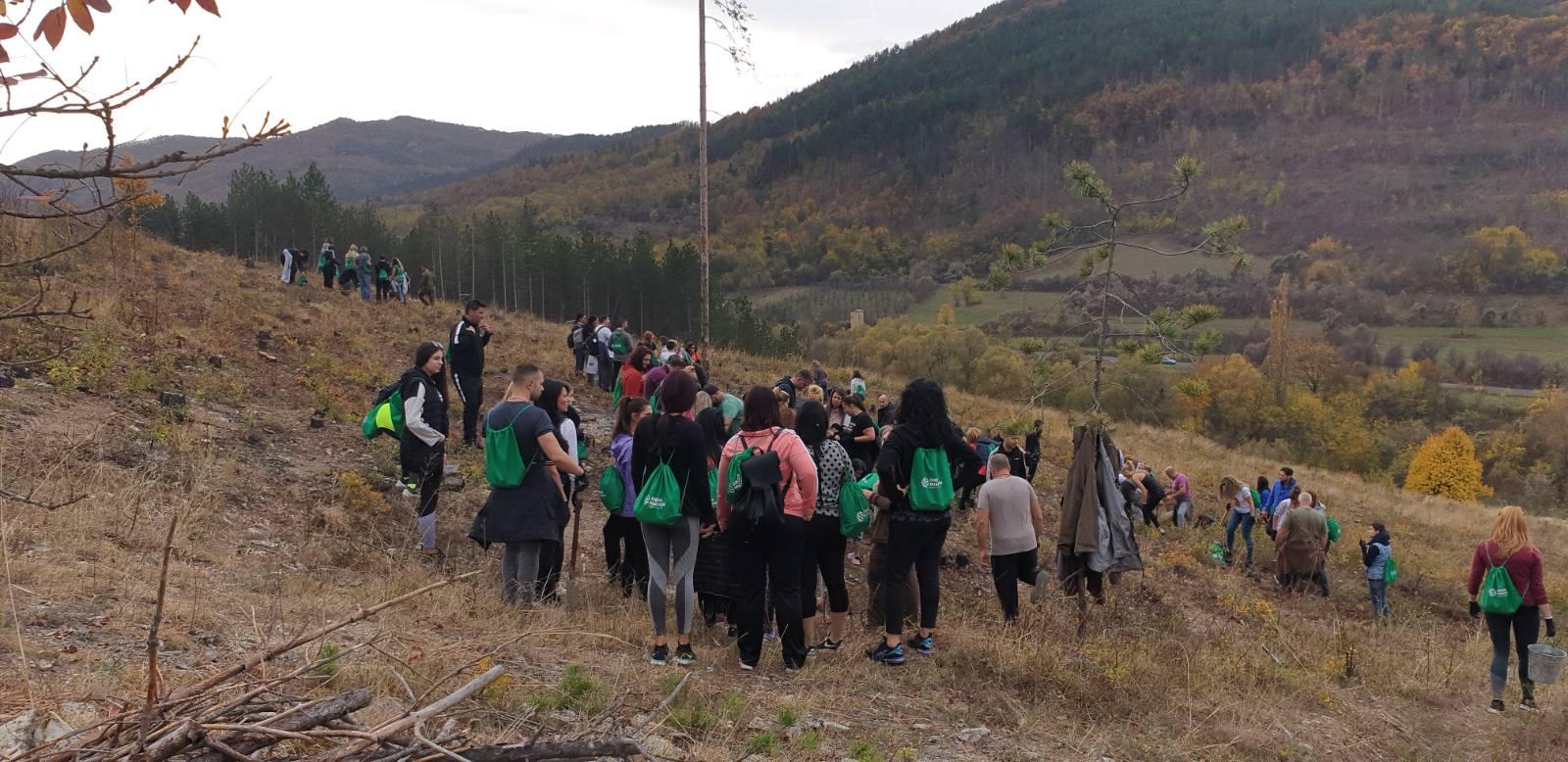 Търговски вериги и банки с общи усилия  възстановяват  25 дка изгоряла гора край село Мечкул