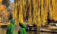 Фигури на двама влюбени е новата атракция в езерото на Разлог