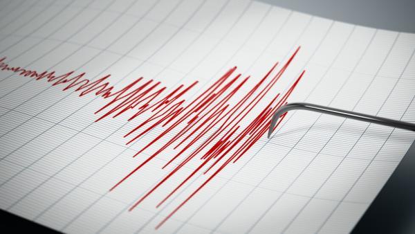 Земетресението от снощи е усетено най-силно в Белица
