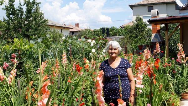 Дворът на Виолета Терзийска от с.Микрево –гордост за местните жители