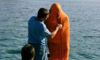 Човекът-амфибия Яне Петков отново ще плува в Охридското езеро за рекорд на Гинес