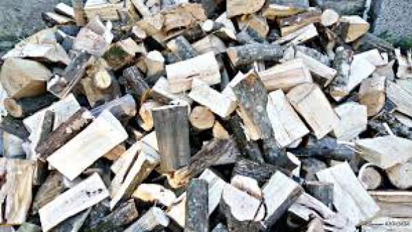 Банскалии получават дърва за огрев срещу платен данък
